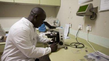 Le groupe d'étude sur les marqueurs moléculaires de la résistance en Afrique de l'Ouest