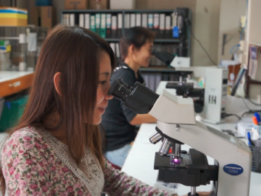Researchers at microscopes