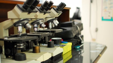 Laboratory microscopes used to detect malaria parasites