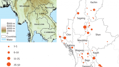 Location of sampling sites, sample sizes, and administrative states and regions of Myanmar, and a relief map of southeast Asia Red circles show numbers of patients in each region.