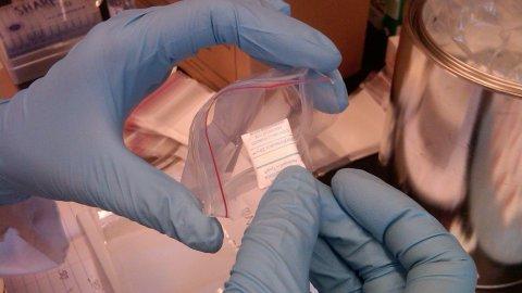 Test de l'efficacité moléculaire